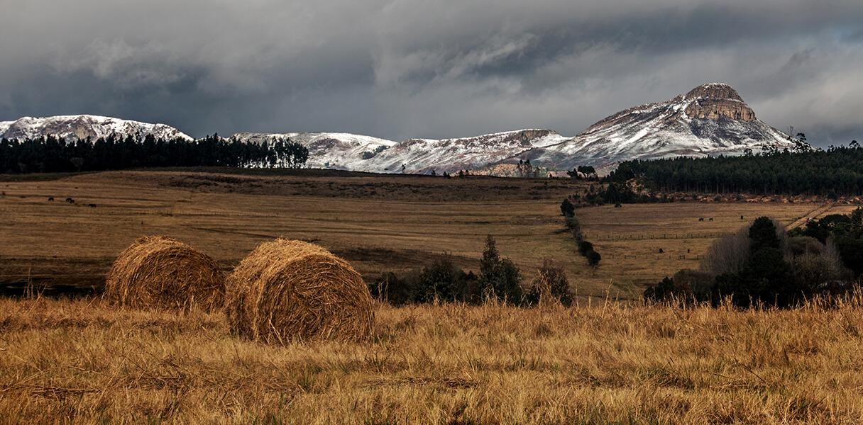 Landscape Winner by Leon Heyes The Dargle (2)